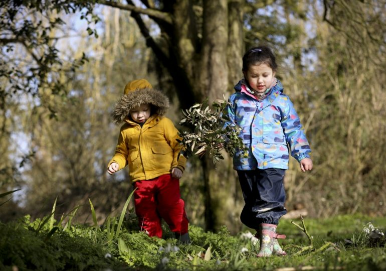 Essex Wildlife Trust is calling for your help